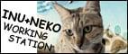 ★INU+NEKO★的LOGO