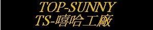 『TS-嘻哈工廠Top-Sunny-Racing-Service』的LOGO