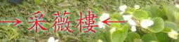 →采薇樓←【網路書店】的LOGO
