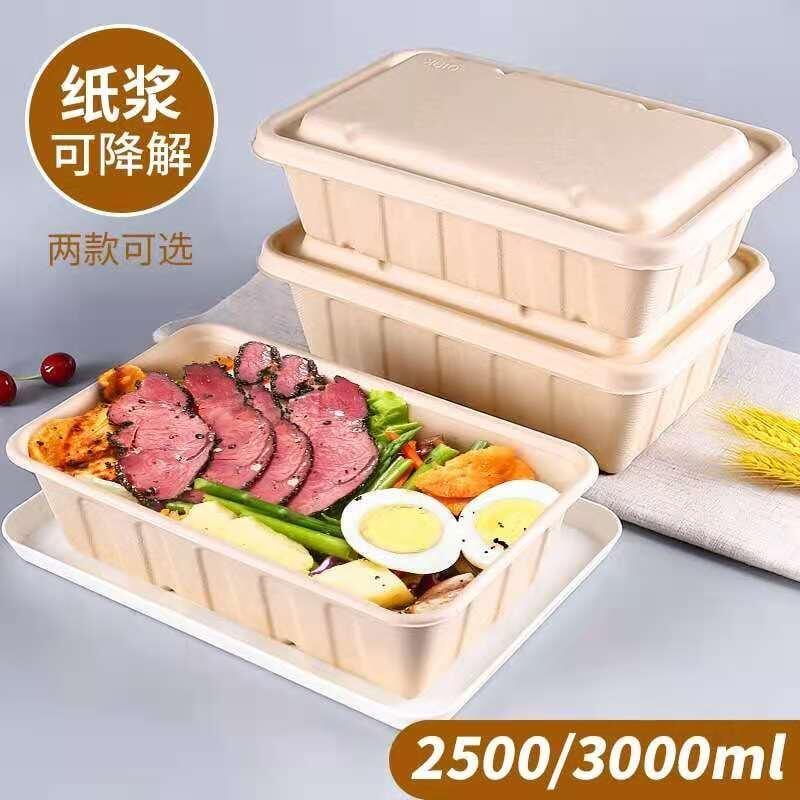 現貨2500ml環保可降解紙漿餐具一次性外賣打包盒飯盒長方形餐盒帶蓋