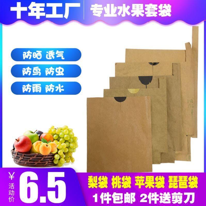 臍橙袋紙袋芒果袋桃防鳥蘋果梨枇杷套袋水果橘子防蟲專用袋子柚子