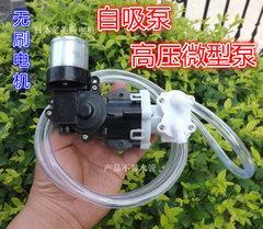 [含稅]拆機 12V直流無刷電機微型小高壓增壓水泵 自吸 抽水機壓力泵