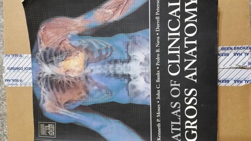 Atlas Of Clinical Gross Anatomy Gallery - human body anatomy