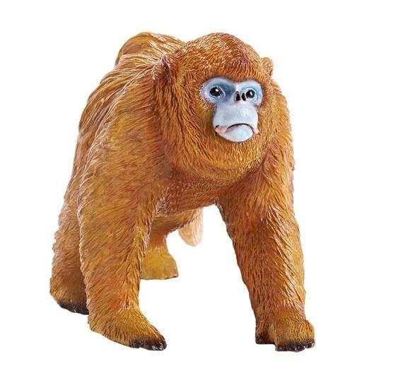 補貨中)動物模型 RECUR  雄金絲猴