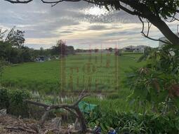 新竹低總價西濱㊣路邊農田-春明地產-035551111