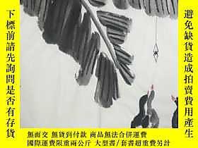 古文物罕見【 】【婁師白】國家一級美術師,中國美協會員,中國畫研究會理事、四尺斗方花鳥(68*68cm)3買家自鑑露天2