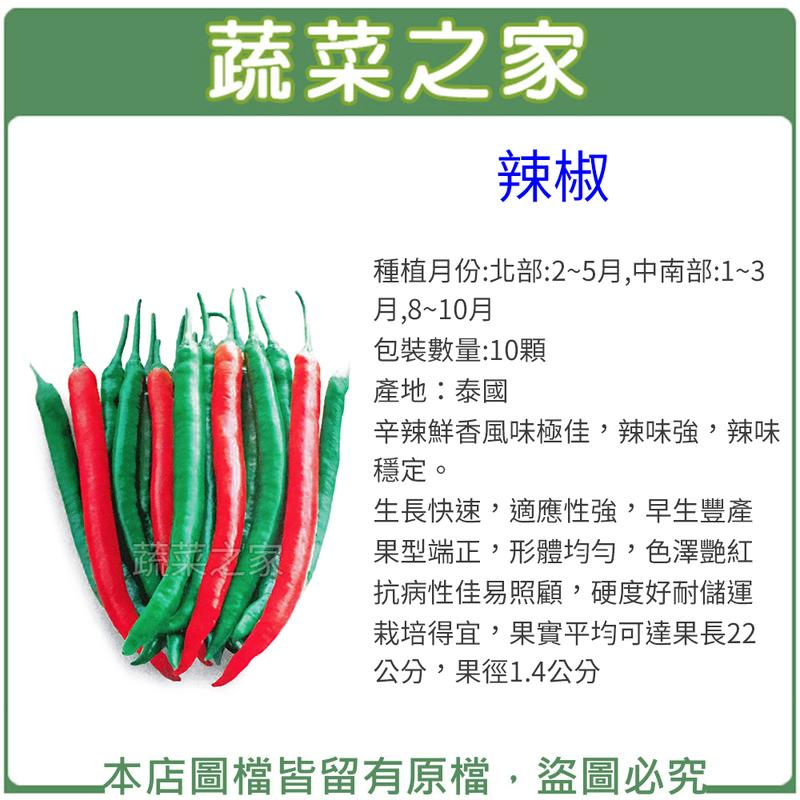 【蔬菜之家】G02.辣椒種子10顆(珍辣.辛辣鮮香風味極佳,辣味強,辣味穩定。生長快速,適應性強,早生豐產)