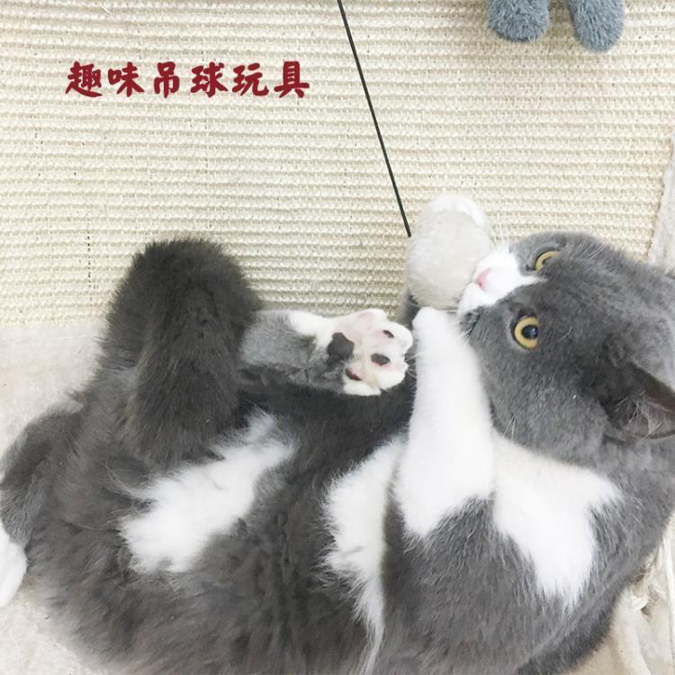貓咪躺椅貓吊床劍麻貓抓板貓爬架樹屋四季貓窩磨爪貓咪 一級棒Al免運 可開發票