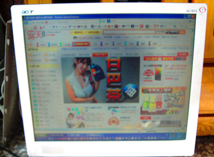 宏碁 acer AL1913 19吋  4:3 LCD液晶螢幕 (偏光板老化,部份區域顏色顯示異常)零件拆賣 100元起