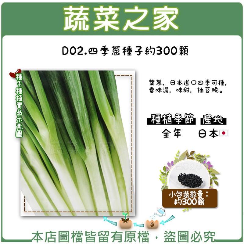 【蔬菜之家】D02.四季蔥種子約300顆(葉蔥.日本進口四季可種.香味濃.味甜.抽苔晚。)