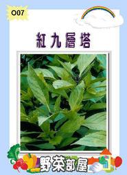 【野菜部屋~蔬菜種子】O07紅九層塔種子0.6公克(約500粒) , 紅梗品種 , 每包12元~