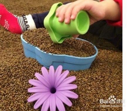 ☆天才老爸☆→決明子沙 (600g )←親子餐廳 玩具砂 保健枕 假沙子 環保砂 砂坑 砂池 動力砂 瑞士 批發 白砂