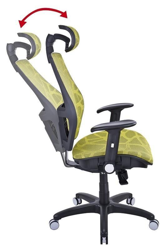 2017投資台灣 【家的椅子】17-2 人體工學網椅 主管椅 辦公椅 電腦椅 醫師椅..貨到付款免運費