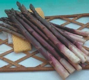 【野菜部屋~】J15 紫衫紫蘆筍種子60顆 , 口感甜嫩 , 質地細緻 , ~