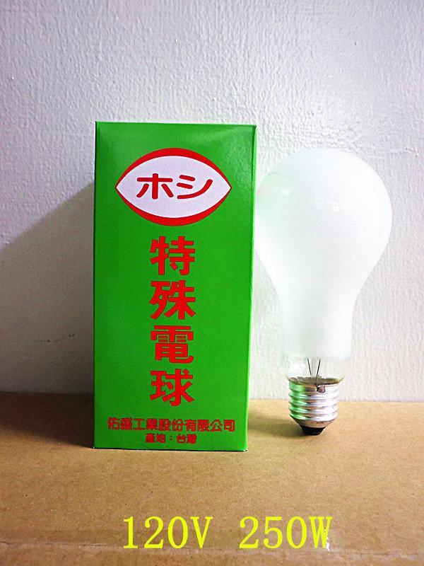 250W 鵭絲燈泡 磨砂燈泡 120V 壽命長 台灣製  -【便利網】