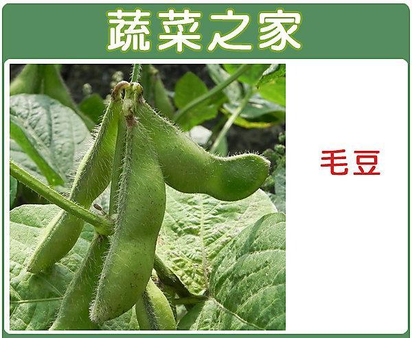 【蔬菜之家】E09.毛豆種子50顆(三粒莢多,莢大,色綠,產量佳)