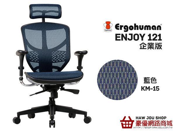 (台中豪優)ENJOY121企業版-台製網-藍色KM-15