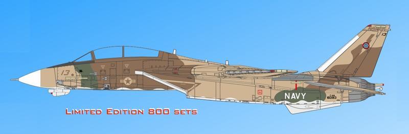 """Calibre Wings  1/72  """"F-14A NSAWC TopGUN 'Desert' (CA72TP05)"""
