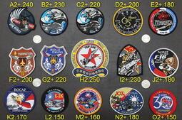 空軍F-16 IDF 幻象 Mirage 2000 F-5 E-2 C-130 單機特技 國道起降戰鬥機飛行夾克布章繡章