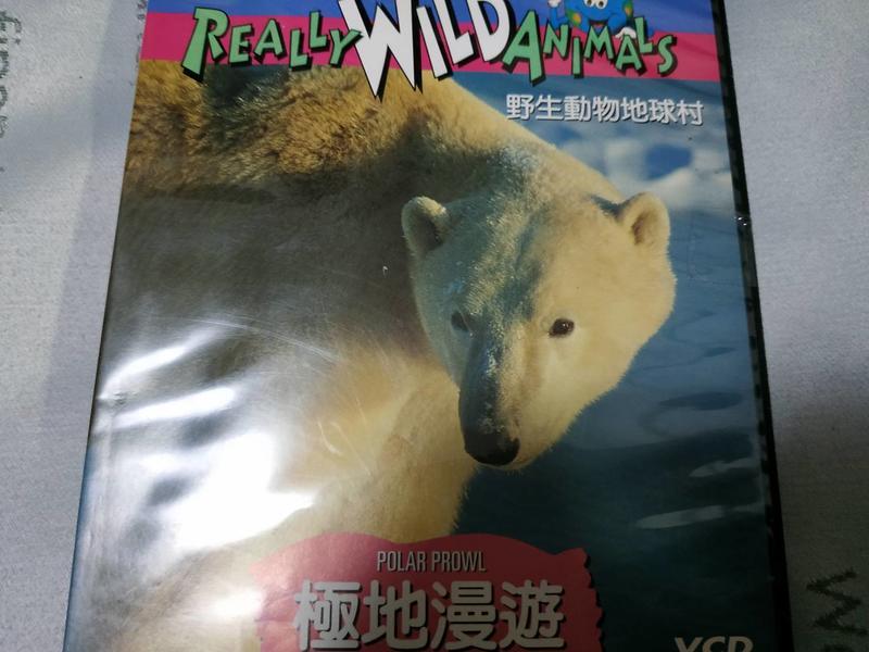 只此一片 國家地理頻道 極地漫遊 野生動物地球村 DVD