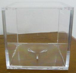棒球盒_躍動_簽名棒球用透明球框 收藏 壓克力 放簽名球專用 收納 方框 展示球框 棒球球框 紀念 簽名球盒 球座 空白