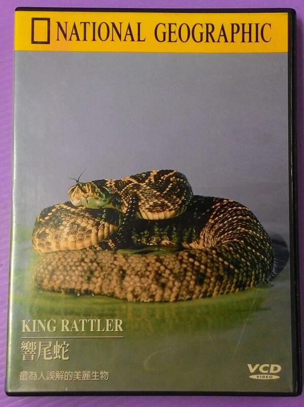 【大謙】《 響尾蛇(VCD.英文發音)》 台灣正版二手DVD