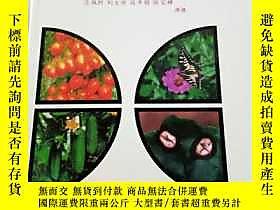 古文物罕見中國蔬菜病蟲原色圖譜續集露天243238 呂佩珂等 遠方出版社  出版1996