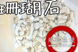 [魚魚便利商店]  進口珊瑚石  (造景、穩定pH值)  一公斤/35元