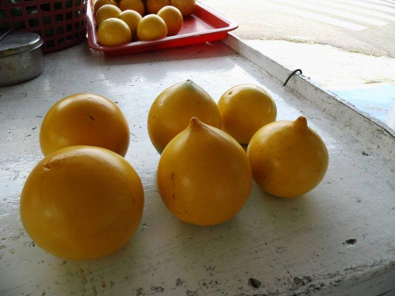 好吃的台灣水果-古坑黃金果7/20上市囉為期一個半月,規格為:每棵約6.5-8兩六棵每箱350元。