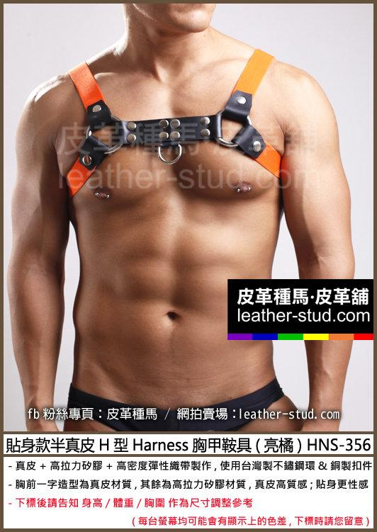 Leather Stud皮革種馬-貼身款半真皮H型Harness胸甲鞍具(亮橘) HNS-356