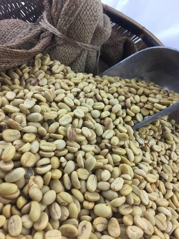 穩殷商社/台灣咖啡生豆/信義鄉咖啡生豆/咖啡生豆/自產咖啡- 露天拍賣