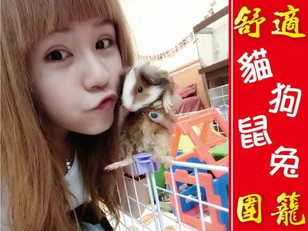 貓籠-狗籠-鼠籠-兔籠 大型-寵物-籠子-DIY組裝-圍籬-鐵網片-井網片-L網片-可當 貓跳台