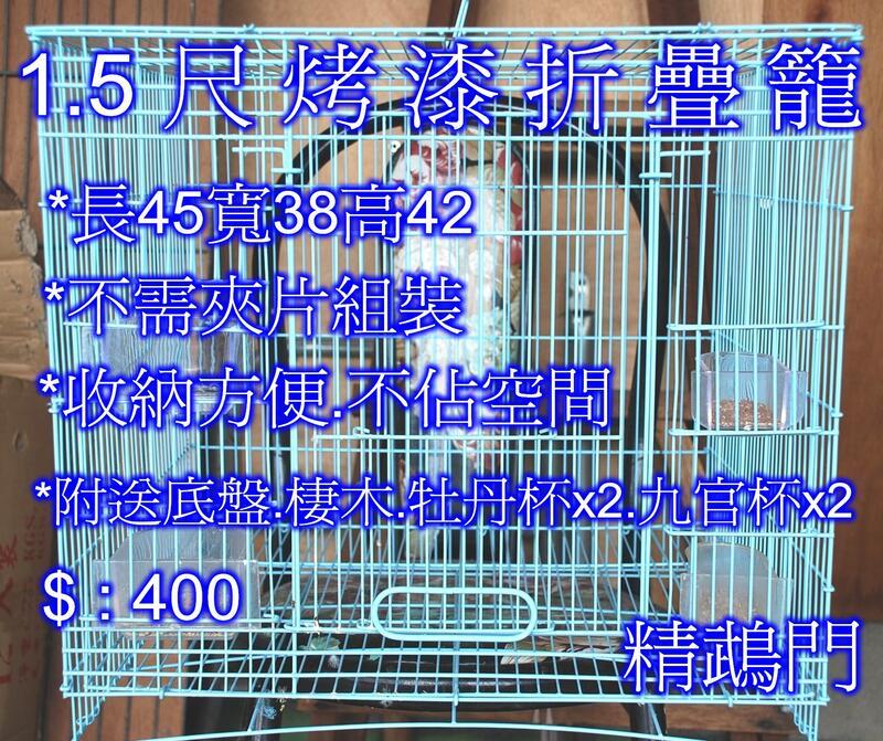 {精鵡門} 折疊鳥籠 1.5尺烤漆 折疊籠.適各種鳥禽.鸚鵡.雉雞.蜜袋鼠 寵物 鳥籠