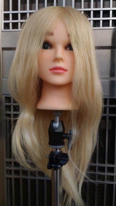 全真髮 100% 白金 白髮 18吋 安尼 安妮 可染 可燙 比賽 檢定 練習頭 假人頭 美髮 練習 乙級 考試