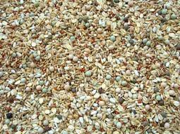 【優寵物】全方位綜合穀料《5公斤賣場》(不含玉米)-全方位營養--優惠價--//
