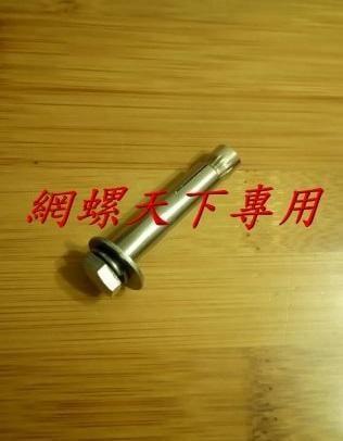 網螺天下※白鐵 不鏽鋼 2分*2吋長平頭式壁虎『台灣製造』4.5元/支,買400支(含)以上免運(另有有多種規格長度)