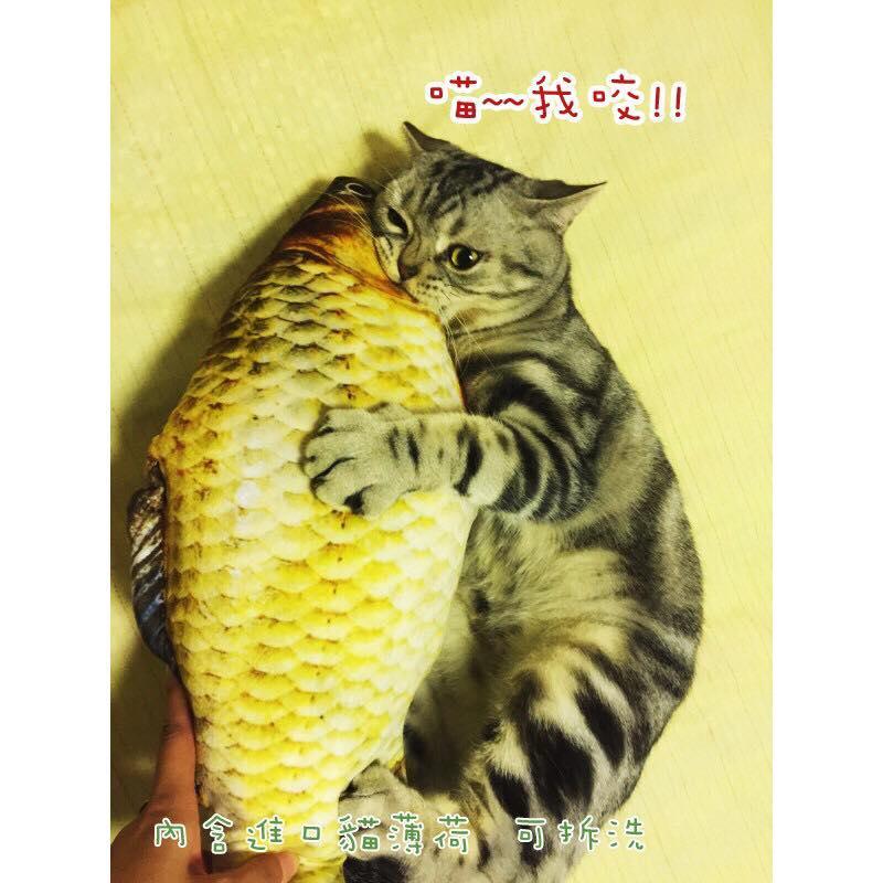 (喵喵貓抓板小舖)仿真貓薄荷魚抱枕