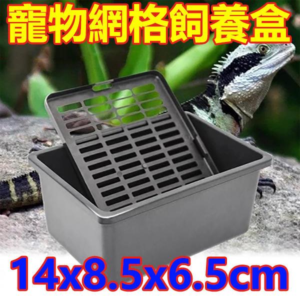 寵物飼養盒 打包裝盒 小型動物運輸打包黑盒子 飼養苗子 烏龜陸龜蜥蜴杜比亞守宮蜘蛛物攻蝎子蛐蛐烏龜蛋鳥蛋可參考「易攝屋」