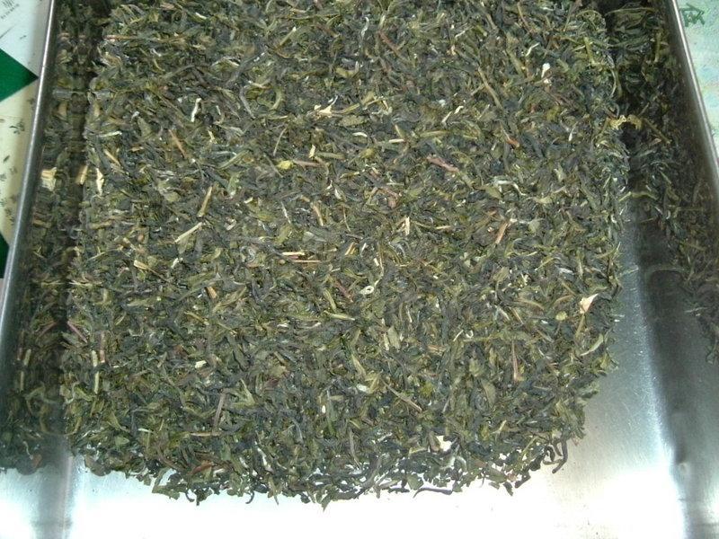 香片~~茉香綠茶~~花茶  >>>>頂級