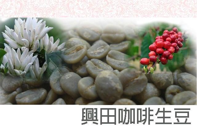 伊帕內瑪莊園 甜蜜日曬 巴西 *經典暢銷產品【興田咖啡生豆】