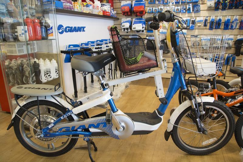 GIANT EA131 EA202 EA331 EA101 捷安特 電動腳踏車兒童座椅 安全座椅 電動自行車 裝好的樣子
