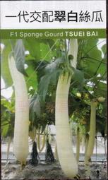 【野菜部屋~蔬菜種子】K46 翠白絲瓜種子2粒 , 很特別的品種 , 味甜清香 , 每包12元  ~
