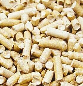 (松木砂)保證不會臭臭的..顆粒很大..不會有粉塵品質好才敢在這裡賣..分解型松木貓砂10L【4包550元免運】