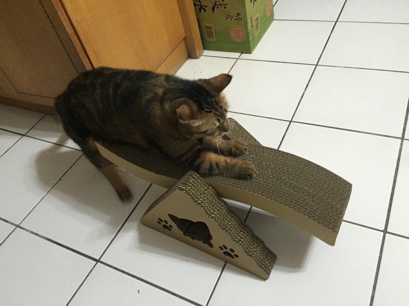 <喵喵貓抓板小舖> S型翹翹板.兩面都可抓.用很久只要250.賣場滿千還送貓抓板