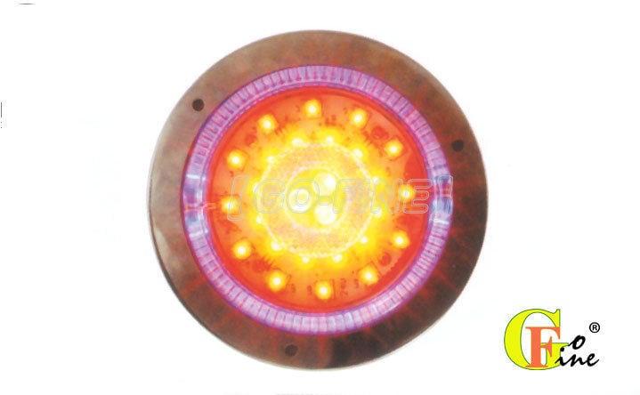 GO-FINE 夠好 台製31led燈圓2孔白鐵平面白殼藍框內黃外紅雙圈3色5線3段led尾燈led后燈led後燈led煞車燈led卡車燈led板車燈5600