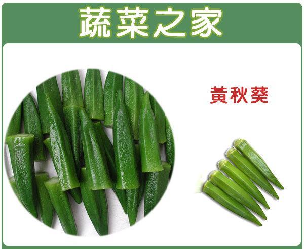 【蔬菜之家】G10.黃秋葵種子50顆(品種:翠香)(翠香,F1.別名羊角豆,結果綠色、營養價值高)