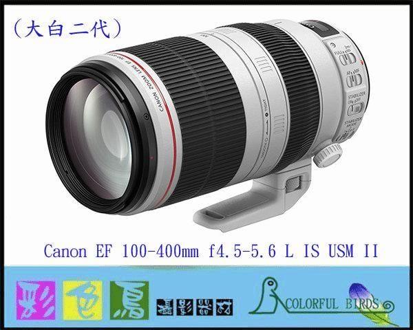 彩色鳥(租鏡頭 租相機 相機出租) Canon EF 100-400mm f4.5-5.6L IS II USM 出租
