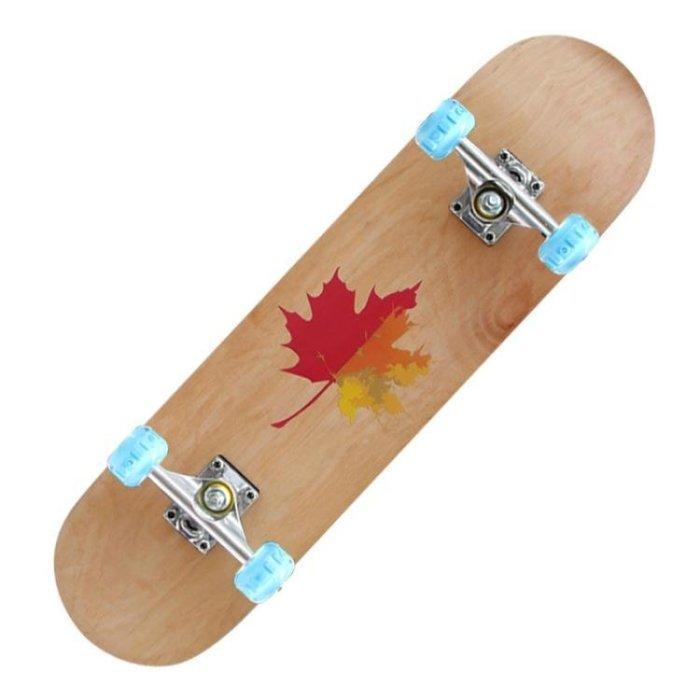 四輪滑板長板髮光輪公路刷街成人青少年男女初學者專業雙翹滑板車igo