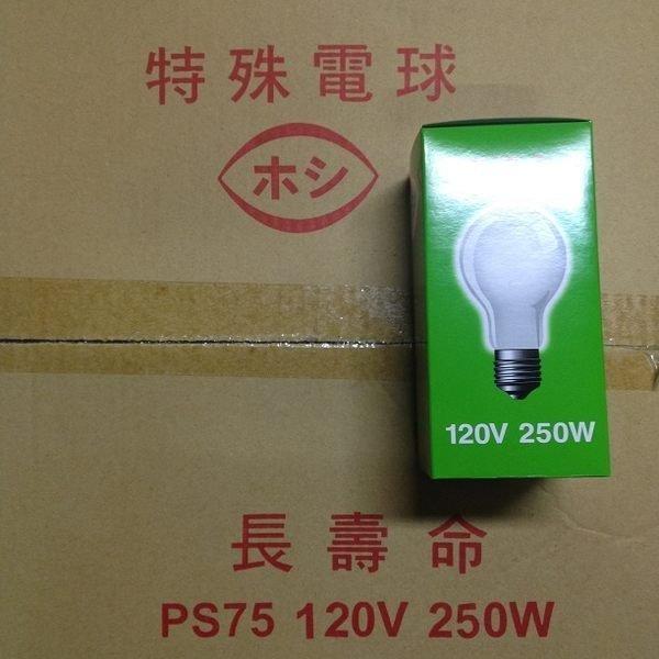 《昌吉電料行》自取 250W燈泡 200W燈泡 150W燈泡 東亞 替代品牌