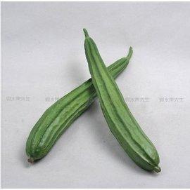 高仿真蔬菜假水果菜品模型飯店??櫥櫃裝飾品仿真PU絲瓜1入